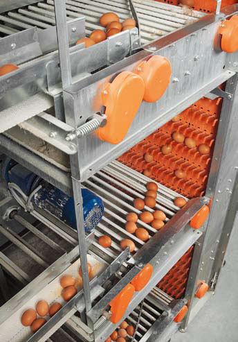 Big Dutchman liftinė įranga parkavimo stadijoje