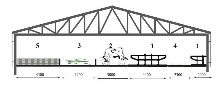 Trijų eilių boksinė karvidė su veršelių gardais