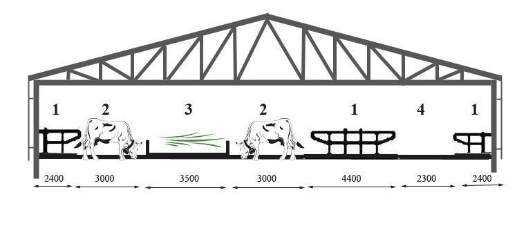 Keturių eilių bosinė karvidė