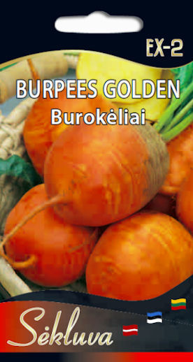Burpees Golden
